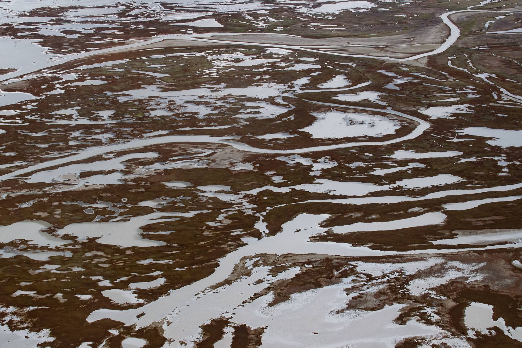 Intertidal Arctic Floodplain